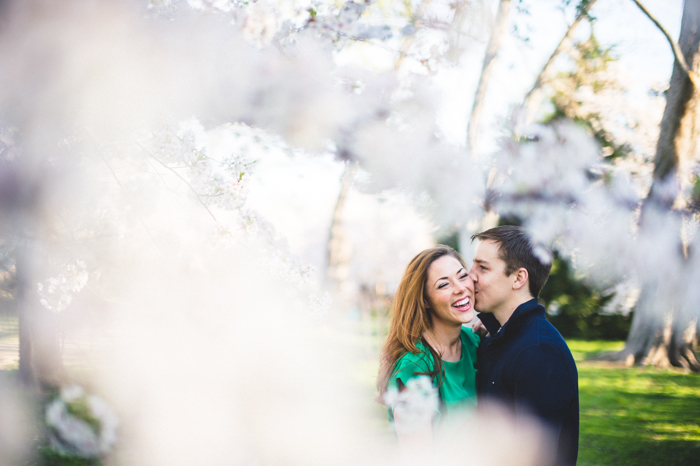 dc cherry blossom engagement pictures (11)