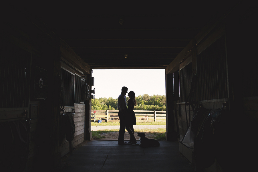 virginia farm engagement pictures (7)