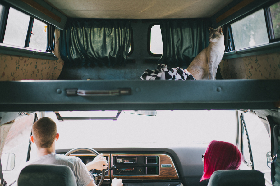 offbeat alternative engagement pictures vintage trailer (14)