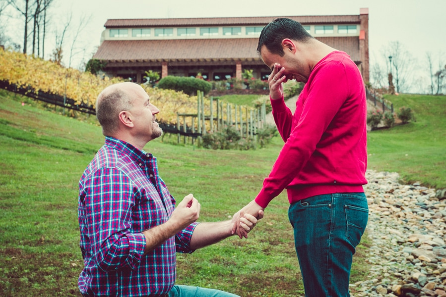 surprise virginia winery proposal same sex (3)