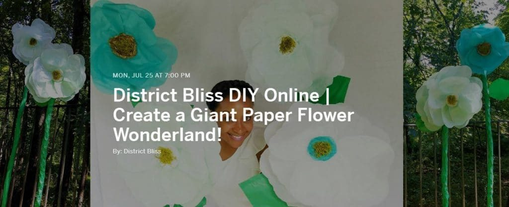 District bliss online diy workshop learn how to make giant paper diy online workshop paper flowers mightylinksfo